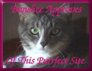 Banshee Approves2.jpg (44428 bytes)